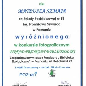 dyplom (Large)